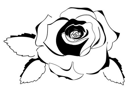 vector illustration of a rose outline silhouette