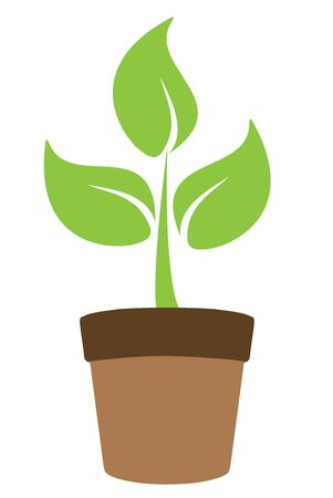 plant pot: vector illustration of a green plant in pot