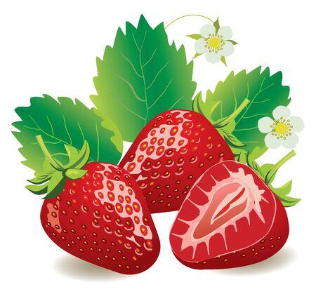 aerografo: ilustraci�n vectorial de jugosas fresas