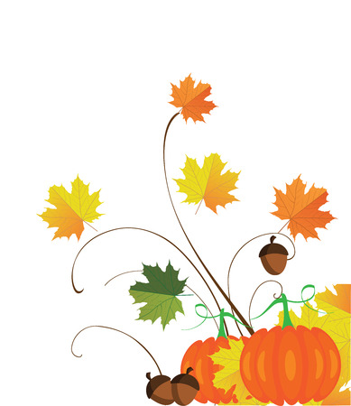 fall leaves: illustration of thanksgiving fall background with leaves, pumpkins, acorns