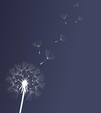 タンポポの花のベクトル イラスト