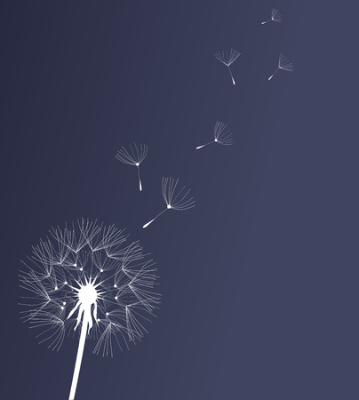 dandelion wind: vector illustration of a dandelion flower