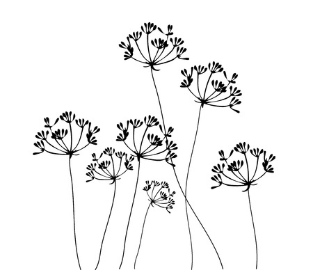 foeniculum: vector illustration of a fennel flower silhouette