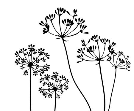 フェンネルの花のシルエットのベクター イラスト