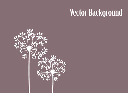 fennel: vector illustration of a fennel flower silhouette