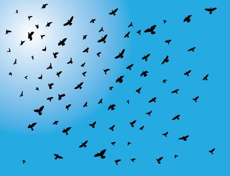 bandada pajaros: ilustración vectorial de aves de la manada volar