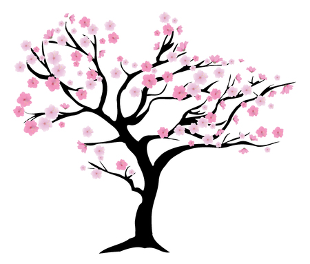cherry tree: vector illustration of a cherry tree in blossom