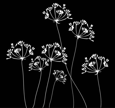 vector illustration of fennel flower silhouettes background