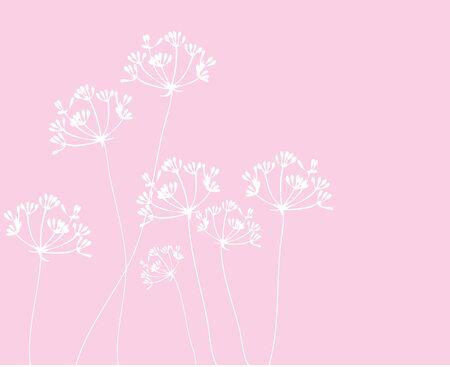 fennel: illustration of fennel flowers silhouettes background Illustration