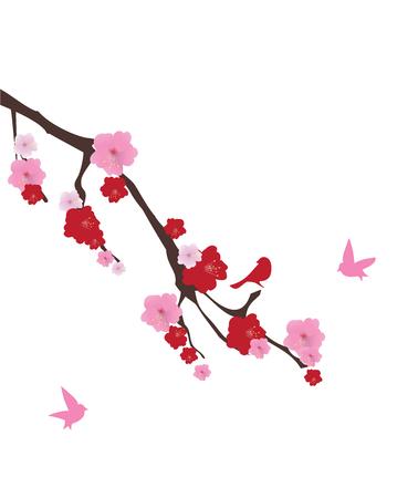 fleur cerisier: illustration of cherry blossom with birds