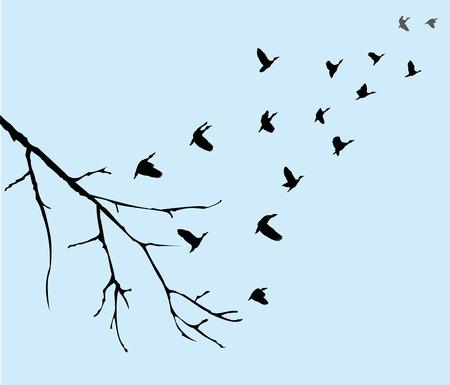illustration vectorielle des oiseaux volants silhouettes avec une branche d'arbre