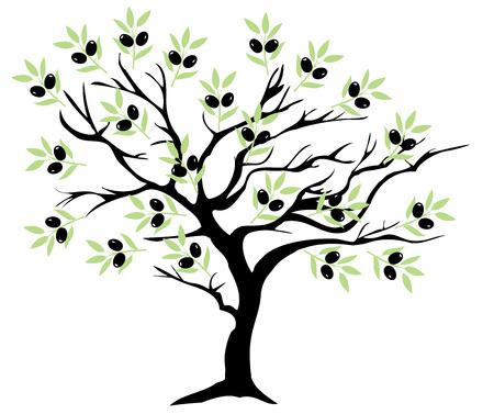 illustrazione vettoriale di un albero di ulivo