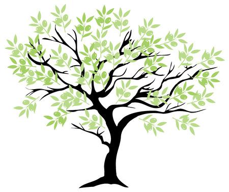 ilustración vectorial de un olivo