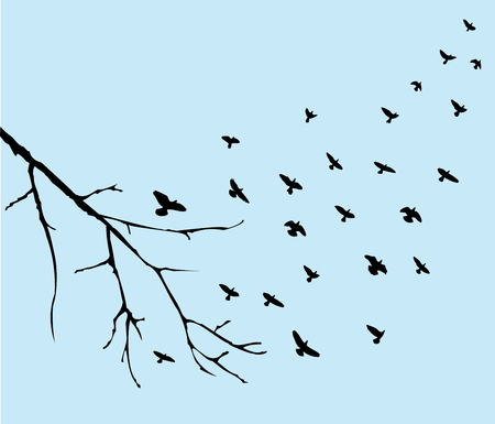 bandada pajaros: ilustración vectorial de las aves que vuelan y rama de un árbol