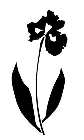 macro flowers: vector illustration of an iris flower vector silhouette