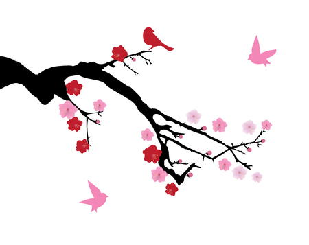 cherry blossom: vector illustration of a cherry blossom branch Illustration