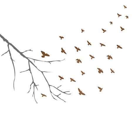 vector illustration of flying birds and tree branch Vettoriali
