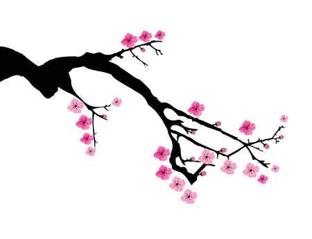 vector illustration of a cherry blossom branch Illustration