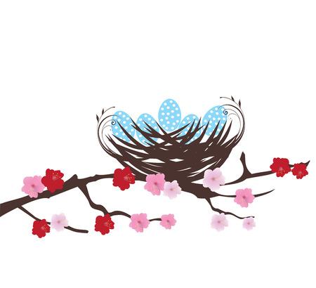 illustration d'un nid d'oiseau avec des oeufs