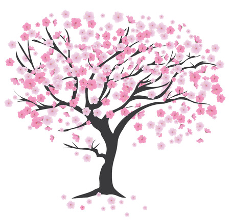 arbol de cerezo: ilustración de un árbol de cerezo en flor