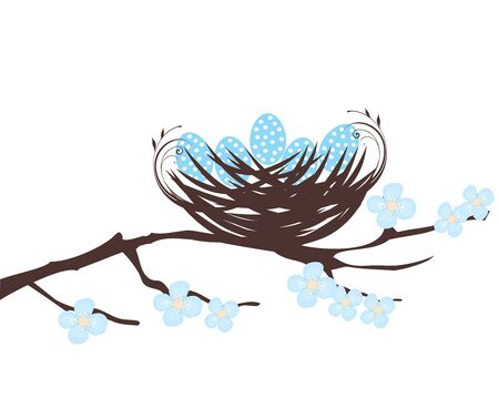 illustration of a bird nest with eggs