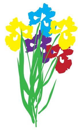 iris flower: illustration of an iris flower Illustration