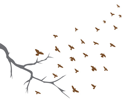 illustration of tree branch and bird flying