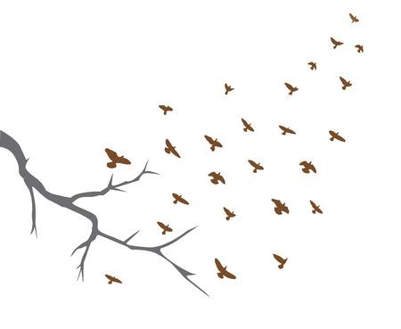 illustration de branche d'arbre et le vol des oiseaux