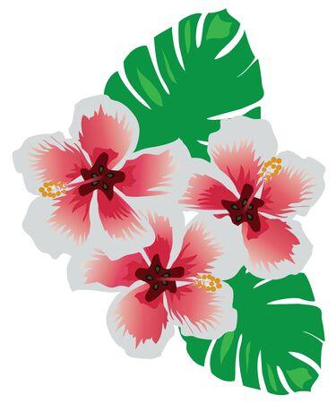 vector illustration of tropical flowers Çizim