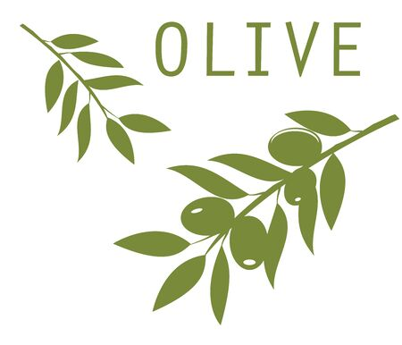 large tree: vector olive branches green silhouettes
