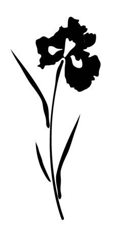 macro flowers: vector illustration of an iris flower silhouette Illustration