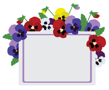 pansies: vector illustration of floral background with pansies Illustration