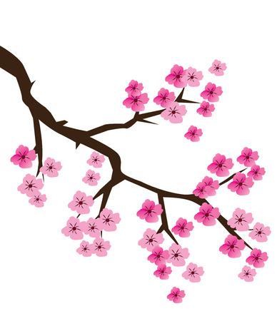 vector illustration of a cherry blossom branch Ilustração
