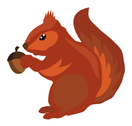 vector illustration of a squirrel with an acorn