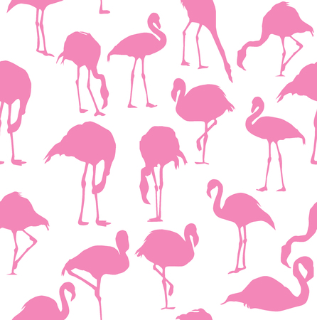 vector illustration of flamingo seamless background Illustration