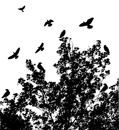birds in tree: vector illustration of a tree background with birds Illustration