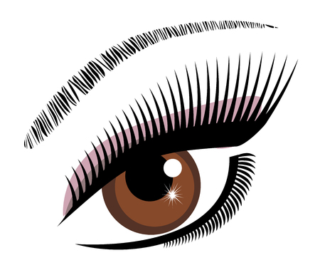 lashes: vector illustration of an eye brown with long lashes