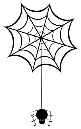 spider web: vector illustration of a spider web with spider