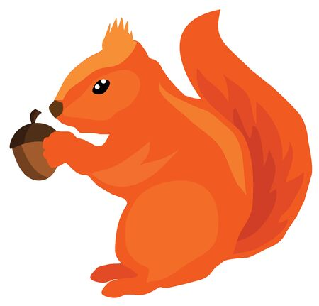 woodland: vector illustration of a squirrel with acorn Illustration