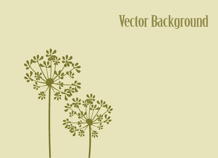 vector illustration of fennel flower background
