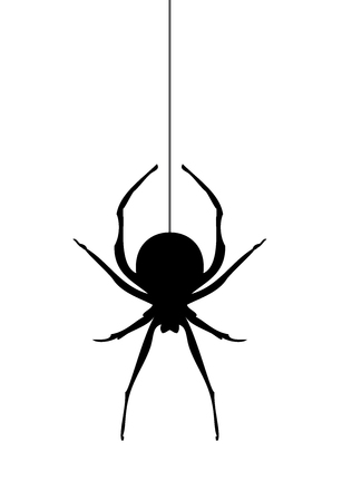 vector illustration of a scary spider silhouette Çizim