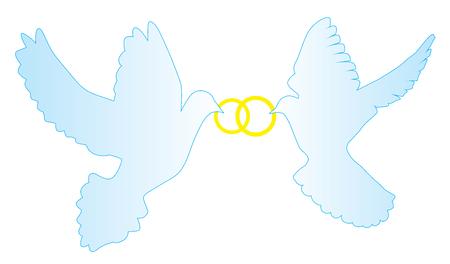 Illustrazione vettoriale di colombe con anelli di nozze Archivio Fotografico - 64661158