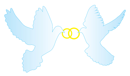 vector illustration of doves with wedding rings Çizim