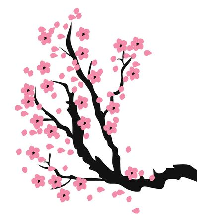 cherry branch: vector illustration of cherry blossom branch