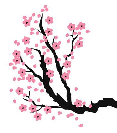 Vektor-Illustration der Kirschblüte Zweig Vektorgrafik