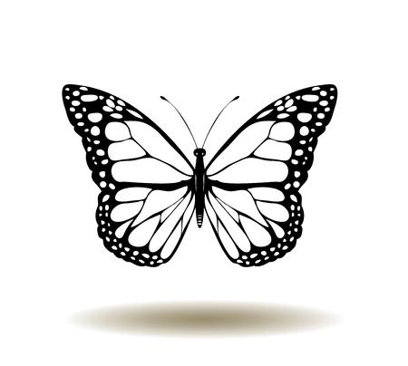 vector illustration of vintage butterflies Çizim