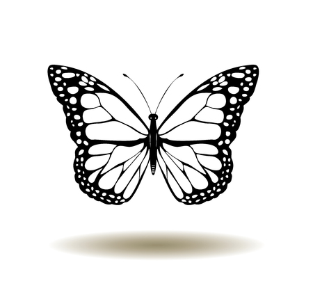 vectorillustratie van vintage vlinders