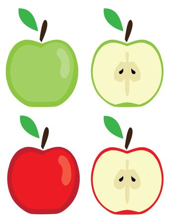 vector illustration of red and green apples