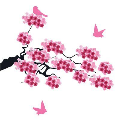 桜の花の背景のベクトル イラスト