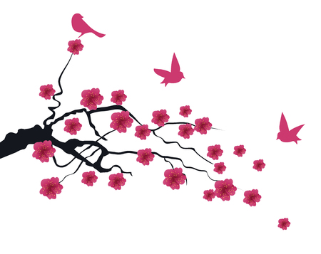 vector illustration of a cherry blossom branch with birds